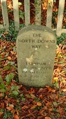 PB030171 (Robert A Stanford) Tags: walking north downs way