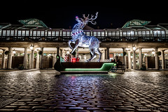 Rudolph in Covent Garden (Daniel Coyle) Tags: rudolphincoventgarden coventgarden london longexposure londonnight night nightphotography nightshot nightonearth nikon nikond7100 d7100 danielcoyle uk england hdr christmas christmasdecoration christmas2017 reindeer lights reflections christmaslights citylights holborn centrallondon architecture
