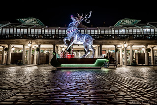 Rudolph in Covent Garden