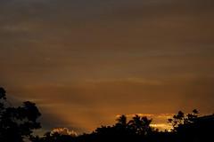 Sunrise 12 18 17 149 (Az Skies Photography) Tags: december 18 2017 december182017 121817 12182017 canon eos 80d canoneos80d eos80d canon80d hilo hawaii hi hilohi sunrise morning sun rise dawn daybreak cloud clouds sky skyline skyscape hawaiisky hawaiisunrise hawaiiskyscape hawaiiskyline red orange yellow gold golden salmon black travel travelphotography vacation hawaiianvacation hawaiian anniversary trip anniversarytrip 25th 25thanniversary