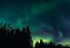 Beautiful night (JH') Tags: wideangel wood evening trees tree tamron travel photoshoot photography auroraborealis aurora autumn sky sweden stars d750 forest fall green heaven landscape longexposure colors clouds beautiful borealis northernlights naturephotograph nature