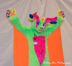 _DSC1219 (Acrufox) Tags: midwest furfest 2017 furry convention december hyatt regency ohare rosemont chicago illinois acrufox fursuit fursuiting mff2017 menagerie fursuitsaturday