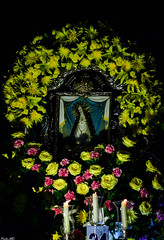 Nuestra Señora de la Soledad de Nueva Ecija (Fritz, MD) Tags: intramurosgrandmarianprocession2017 igmp2017 igmp intramurosgrandmarianprocession intramurosmanila intramuros marianprocession marianevents cityofmanila procession prusisyon nuestraseñoradelasoledad ourladyofsolitude nuestraseñoradelasoledaddenuevaecija sanisidronuevaecija