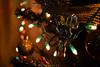 Harp Player (Ruth Joy Sta Maria) Tags: angel harp decor christmas lights colorful