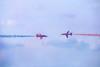 One-on-One (edelweisskoenig) Tags: britain england fuji fujifilm fujinon reisen uk travel plane planes airshow theredarrows aerobatic redarrows red arrows flugschau xt20 fujifilmxt20 50140mmf28 xf50140mmf28rlmoiswr xf50140 xf50140mmf28 fujinonxf50140mmf28rlmoiswr flugzeug flugzeuge raf royalairforce royal air force wingsandwheels wingsnwheels wingswheels wingswheels2017 dunsfold oneonone