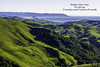 Happy New Year 2018 (randyandy101) Tags: happynewyear happyholidays californiacentralcoast cambria california cambriaca cambriapinesbythesea usa