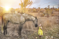 Believe (livininfrostytown) Tags: unicorn believe mystical magic photoshop cs6 composite girl child little fun belledress beautyandthebeast yellow dream horse sunset love childhood kaycreektrail layton utah 2017 charmedimpressions