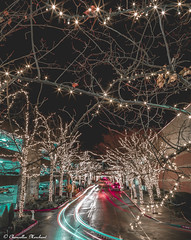 One of the Most Festive Town in America (Endless Reflection Photography) Tags: bellevue downtownbellevue bellevuedowntown visitbellevue bellevuemagicseason snowflakelane snowflakelane2017 bellevuecollection bellevuesquaremall kemperdevelopment xmas christmas bellevuechristmas seattle seattleseastside bellevuehistory longexposure bellevuelongexposure lighttrails pnw whotelbellevue bellevueshopping cmerchant1 endlessreflectionphotography ereflectionphotos moody moodyphotography moodybellevue seattlemoody bellevueful cityofbellevue mybellevue mostfestivetowninamerica festivetown