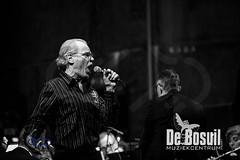 2017_01_07 Nieuwjaarsconcert St Antonius NJC_3052-Johan Horst-WEB
