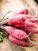 French radishes (David Lebovitz) Tags: davidlebovitz frenchcuisine georgeannebrennan charcuterie fat juniperberries pate porkfat porkrillettes porkshoulder recipe spices terrine