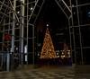 Christmas in Pittsburgh (jimbobphoto) Tags: christmas lights ppg pittsburgh pennsylvania