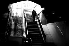 By going out of the basement (pascalcolin1) Tags: paris12 garedelyon escalier stairs ombre lumière shadow light homme man photoderue streetview urbanarte noiretblanc blackandwhite photopascalcolin canon50mm 50mm canon