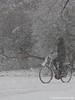 op de fiets (Marjon van der Vegt) Tags: sneeuwdenhaag koud sneeuwval sleeen sneeuwpop