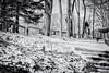 Sunday Ride (Off The Beaten Path Photography) Tags: horse human people animal dog canon markiii 5dmarkiii