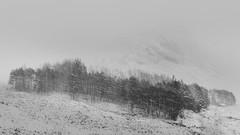 Glencoe (Derek Robison) Tags: scotland landscape winter uk glencoe snow blizzard snowing