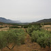 Fluminimaggiore, Sardinia