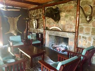 Zimbabwe Cape Buffalo Hunt 46