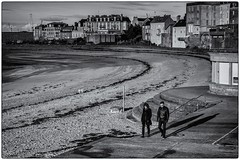 Sortie entre deux averses ! (bertranddorel) Tags: couple homme femme man woman people city bnw bw bn blancetnoir blackandwhite ville plage hiver beach contrast saintmalo bretagne france europe chien human digue noiretblanc ombres shadows soleil urban ciutad biancoenero blancoynegro città spiaggia playa hombre uomo