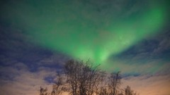 Revenant (little_frank) Tags: northernlights polarlight auroraborealis sky nature night green marvel beauty beautiful over winter cloudy auroraboreale amazing dream vision miracle