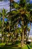 _DSC0174 (Riviera de São Lourenço) Tags: bertioga bertiogasp fotonativa marfranzmfotografobertioga riviera rivieradesaolourenco verao2018 veraorivieradesaolourenco vilanapraiariviera