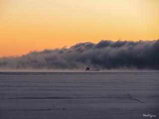 Into the fog - Dans le brouillard