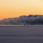 Into the fog - Dans le brouillard thumbnail