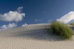 Amrum dunes - summer memories (kalakeli) Tags: amrumdünen amrum nordsee northernsea august 2017 dünen strand beach