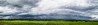 fragmentos e tempestade (Thiago Orsi) Tags: agricultura agua caminho campo cerrado ceu chuva clouds field fragmentos fragments goias plantacao rain rainstorm remanescentesflorestais savana savannas shelfcloud sky storm tempestade trovao way brazilian braziliancerrado br352 arcus cloud arcuscloud