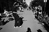 Sounds like Satchmo (michael.mu) Tags: leica m240 35mm leicasummicron35mmf20asph leicasummicronm1235mmasph neworleans streetphotography musician shadow trumpet satchmo jazz blackandwhite bw monochrome
