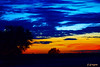 DSC_9536 ~ Sunset in Clewiston (stephanie.ovdiyenko) Tags: sunset colors sky sun silouettes landscapes