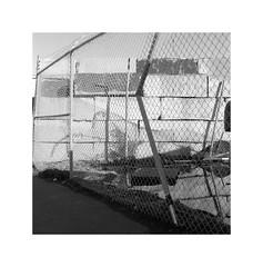 (billbostonmass) Tags: fuji acros 100 ddx film hasselblad 501c 80mm planar t epson v800 everett massachusetts