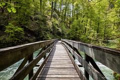 Prvi most na rijeci Kupi (MountMan Photo) Tags: rijekakupa kupari gorskikotar primorskogoranska croatia landscape most voda