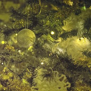 Seasons Greetings...