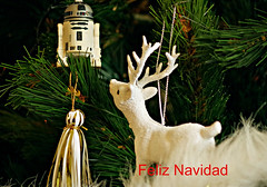 Feliz Navidad a todos los amigos de Flickr-Merry Christmas to all the friends of Flick (portalealba) Tags: navidad christmas zaragoza portalealba pentax pentaxk50 1001nights 1001nightsmagiccity frommetoyouwithlove contactgroups