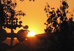 sunset in Bonlanden  auf den Fildern - #002 crop (eagle1effi) Tags: filderstadt bomlanden bonlandum regionstuttgart aufdenfildern kreisverkehrbonlanden silhouette siluette silueta schattenriss coucherdesoleil puestadelsol tramonto solnedgång auringonlasku غروب sun sonnenuntergang bonlanden eagle1effi ishotcc sunset sunsets coucherdusoleil kreisel verkehrskreisel kreisverkehr yourbestoftoday tagesbeste ae1fave favoriten lieblingsbilder flickr photos fotos beste bestof byeagle1effi selection selektion auswahl damncool sonne