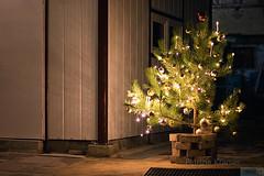 Weihnachtslichter · Christmas Lights