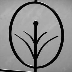 DSC09424 (omirou56) Tags: 11 ασπρομαυρο ασπρομαυρη γκρι blackwhite blackandwhite bw silhouette outdoor sonydscwx500 iron
