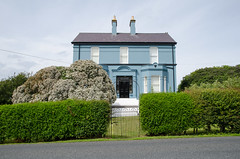 "The ""Screamers'"" House, Burtonport (Spannarama) Tags: blue house bluehouse gate hedge shrubs burtonport donegal ireland"