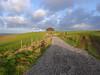New Years Day, Dorset (auroradawn61) Tags: lumixlx100 landscape countryside dorset uk england january 2018 fields wingreenhill