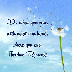 Do What You Can... (Javcon117*) Tags: quote saying text typography do what you can have are theodore roosevelt motivational inspirational javcon117 motivate inspire sky blue flower dandelion blowing wind spring summer