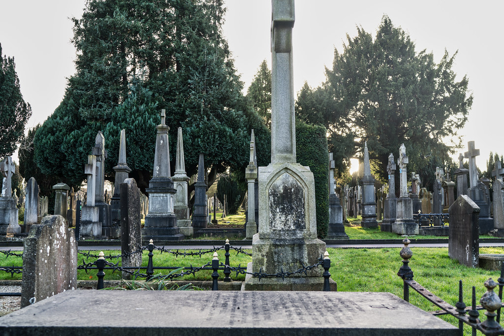 VISIT TO GLASNEVIN CEMETERY IN DUBLIN [FIRST SESSION OF 2018]-134899