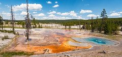 The Colors of Yellowstone (Ron Drew) Tags: nikon d800 1424mm wideangle yellowstone yellowstonenationalpark wyoming midwaygeyserbasin hotspring landscape vista outdoor microbial usa nationalpark summer