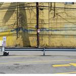 Pittsburgh yellow wall thumbnail