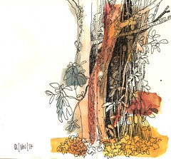 Beech and japonese snowball (dasilva artmania) Tags: nature watercolor ink sketch drawing bäume trees natur sträucher aquarell tusche zeichnung skizze