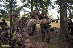 British troops exercise in Estonia as part of the NATO's eFP (Enhanced Forward Presence) (Defence Images) Tags: forest woods wooded landscape terrain cabrit op operations virtushelmet helmet headwear mtp multiterrainpattern camouflage combats 556mm l85a2 a2 sa80 assaultrifle smallarms firearm gun weapons estonia ex exercise training man male soldiers identifiable personnel aerial tacticalradio digitalcomms bowman radio equipment army regiments thelightdivision therifles 5thbntherifles 5rifles nato efp enhancedforwardpresence multinational interoperability partnering unit attack action pointing supportweapons antiarmour nlaw nextgenerationlightantitankweapon missile 150mm protectiveequipment gloves bodyarmour virtus defence defense uk british military tapa