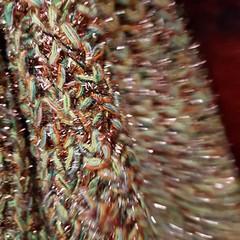 Este fin de semana recién pasado se celebró el AGUERE HANDMADE ROOMS @aguerehandmaderooms Winter Edition Diciembre 2017  Muchas felicidades a @odileab por la organización de este evento y por invitarme a asistir.  Hemos disfrutado junto con Carlos @carlos (carlosmontesdeocahairandmakeupstudio) Tags: fashionstyle aguerehandmaderooms tenerife handmade musica decoración arquitectura lalaguna complementos fashion fashionista slowfashion fashionblogger gastrobar belleza influencer bloggerdetenerife arquitecture bloggermoda blogger teneriffa moda