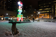 Holiday Light Display at Berczy Park Toronto (A Great Capture) Tags: dog walking park agreatcapture agc wwwagreatcapturecom adjm ash2276 ashleylduffus ald mobilejay jamesmitchell toronto on ontario canada canadian photographer northamerica torontoexplore fall autumn automne herbst autunno 2017 city downtown lights urban night dark nighttime cold snow weather cityscape urbanscape eos digital dslr lens canon rebel t5i outdoor outdoors glow vibrant colorful cheerful vivid bright architecture architektur arquitectura design streetphotography streetscape street calle holiday neige schnee depthoffield dof parc lamp post bench benches st lawrence old christmas2017
