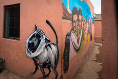 graffiti - tats cru & daze - school oulad bouzid, marrakesh (urbanpresents.net) Tags: bg183 daze jardinrouge kersavond marrakesh montresso morocco publicart school streetart tatscru urban urbanart urbanpresentsnet