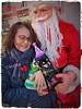 2017 Christmas 💕 (cute-little-dolls) Tags: chihuahua smoothchihuahua blacktanchihuahua mydog pet dogwear christmastree santa