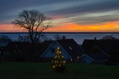 The sunset tonight (frankmh) Tags: sunset christmastree landscape öresund hittarp skåne sweden denmark outdoor